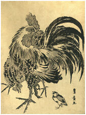 5376.Chinese rooster ready for a fight.poultry.POSTER.decor Home Office art