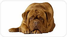 Dogue de Bordeaux - glossy labels/stickers - various designs / personalised