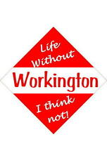 Workington Car/window signs / Personalised signs / flexible magnets