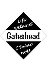 Gateshead Car/window signs / Personalised signs / flexible magnets