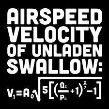 AIRSPEED VELOCITY OF AN UNLADEN SWALLOW (monty python dvd poster movie) T-SHIRT