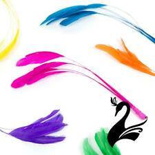 Feather Stripped Coque Bunch of 6 - Craft Millinery Fly Fishing