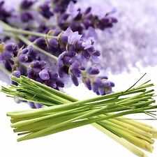 Lavender & Lemongrass Fragrance Oil Candle/Soap Making, Oil Burners, Diffusers
