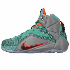 Nike Lebron XII GS 12 James NSRL 2014 Boys Girls Youth Womens Basketball Shoes