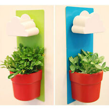 NEW  Rainy Flower Pot Hanging Wall Mount Planters Rainy Pot with Seeds 3101