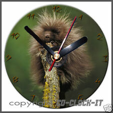 Spikey Porcupine on Tree Wall/Desk CD Clock & Stand Plus Personalised Message