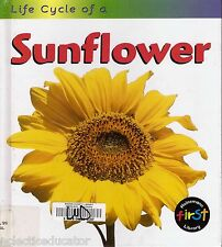 Life Cycle of a Sunflower by Angela Royston Science Hardcover Flowers