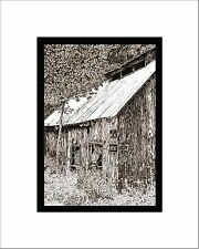 Haines Falls Sap House Print, Pen and Ink, Matted