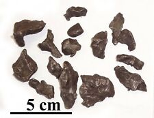 Sikhote Alin Iron meteorite, lot of many small fragments 2-19 gr each, 100grams