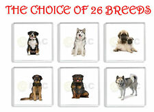 WORKING DOG FRIDGE MAGNETS CHOICE OF 26 BREEDS