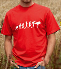 Evolution of a Ninja - Funny Martial Arts T-shirt, Tshirt,Tee Shirt  (2154)