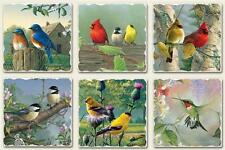 Tumbled Stone Magnet in Wild Bird designs, Choice of Design, Priced Each