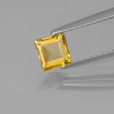 Masterpiece Collection: Square Genuine (Natural) Golden Citrine (3x3-5x5mm)