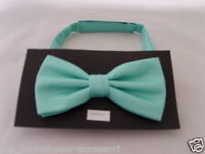 Mint GREEN Ready Pre-tied Mens Bow tie  With us   The More U Buy The More U Save