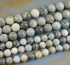 """10mm 12mm Natural Coral Fossil Round Beads 15"""""""