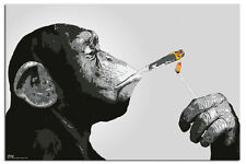 Steez Joint Smoking Monkey Poster New - Maxi Size 36 x 24 Inch