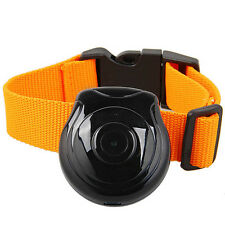 Dog Cat Pet Collar Cam Video Audio Trace Camera DVR Eyeview Interval Recorder