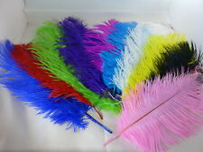 """OSTRICH FEATHERS 10""""-12"""" LONG PACK OF 10 COLOURED ARTS CRAFTS FREE P&P UK SELLER"""