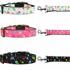 Lollipops Nylon Dog Collar With Matching Leash