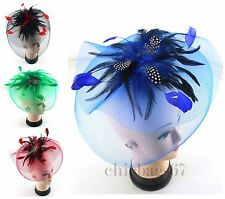 Wow Net Headband Aliceband Hat Feather Hair Fascinator Weddings Prom Royal Ascot