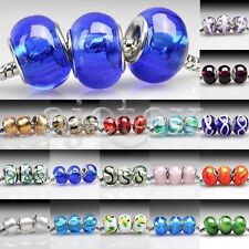 5pcs Large Hole Murano Glass Lampwork Beads Fit European Charms 14x10mm