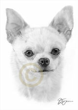 CHIHUAHUA dog artwork pencil drawing print A4 / A3 sizes signed art