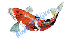 Koi Fish Japanese Pond Fish Vinyl Decal Sticker - Car Truck RV Cup Boat Tablet