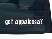 got appaloosa? HORSE HORSES BREED FUNNY DECAL STICKER ART WALL CAR CUTE