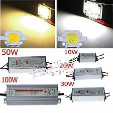 High Power 10W 20W 30W 50W 100W  White LED SMD Chip Bulb + LED Driver Supply