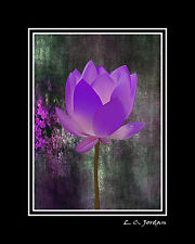 """Double MATTED Photograph """"Oh So Purple"""" 8x10 to 16x20 Wall Art Silver Metallic"""