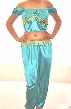 SALE NEW ADULT BLUE  ALADDIN JASMINE COSTUME GENIE ARABIAN HAREM BELLY COSTUME