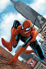Marvel The Amazing Spider-Man No.546 Cover: Spider-Man Poster