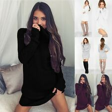 Autumn Winter New Womens Long Sleeve Knit Pullover Turtleneck Sweater clothes