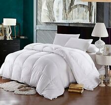 White Goose Down Comforter 700 FP 600 Thread Count Oversized Winter Weight