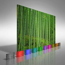 Bamboo Forest Canvas Print Large Picture Wall Art