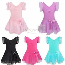Girls Kids Ballet Dance Dress Leotard Tutu Skirt Fancy GYM Dancewear Costume