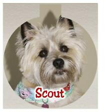 Personalized PET Photo Christmas Ornament Any Photo & Message Free Ship