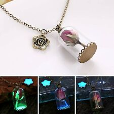 Fashion Glow In The Dark Dried Rose Flower Glass Pendant Necklace Sweater Chain