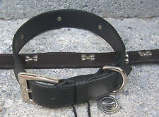NEW Wide Leather Dog Collar W/Silver Bones PICK SIZE