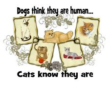 Custom Made T Shirt Dogs Think Human Cats Know They Are Funny Pets Kitty NWOT