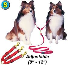 Adjustable Triple Dog Leads - Small - Choose the Color - PT58ATDL2 - Walk 3 dogs