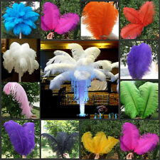 5/10/50 PCS High Quality Ostrich Feathers 15 -55cm/6 -22 Inch Wedding decoration