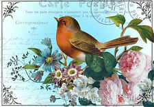 Carte Postale Bird Roses Collage Quilt Block Multi Szs FrEE ShiP WoRld WiDE (P5