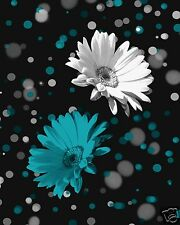 Daisy Flower Wall Art/Teal Home Interior Decor Matted Picture
