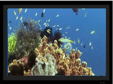 Digital Picture Frame Aquarium Videos Download