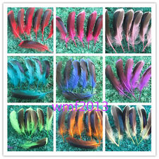Wholesale beautiful duck feathers grow 4-5 inches / 10-12 cm variety of colors
