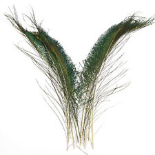 50pcs natural peacock sword feathers 30-35cm/12-14'' For DIY Decoration