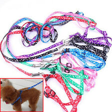 Small Pet Dog Cat Rope Lead Leash Harness Chest Nylon Neck Strap Free Shipping