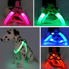 Hot Cute LED Glow Flash Dog Belt Harness Leash Tether Pet Light-up Safety Collar