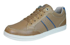 Geox J Anthor B Boys Leather Sneakers / Shoes - Brown